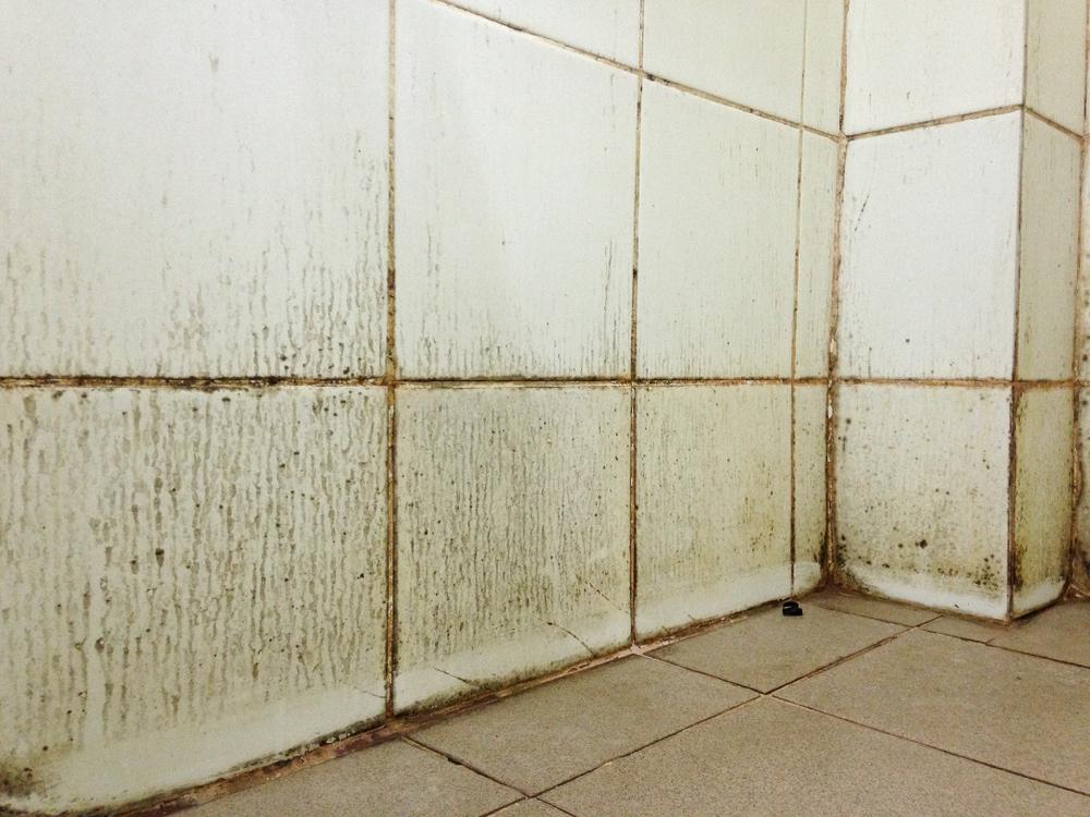 Comment enlever la moisissure dans la salle de bain ? - GO MAGAZINE